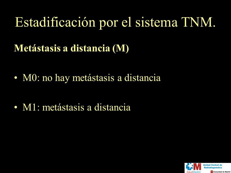 Estadificación por el sistema TNM.