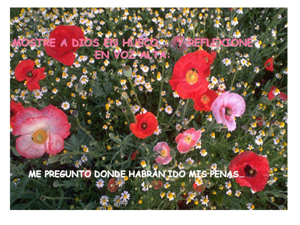 MOSTRE A DIOS EN HUECO….. Y REFLEXIONE EN VOZ ALTA: