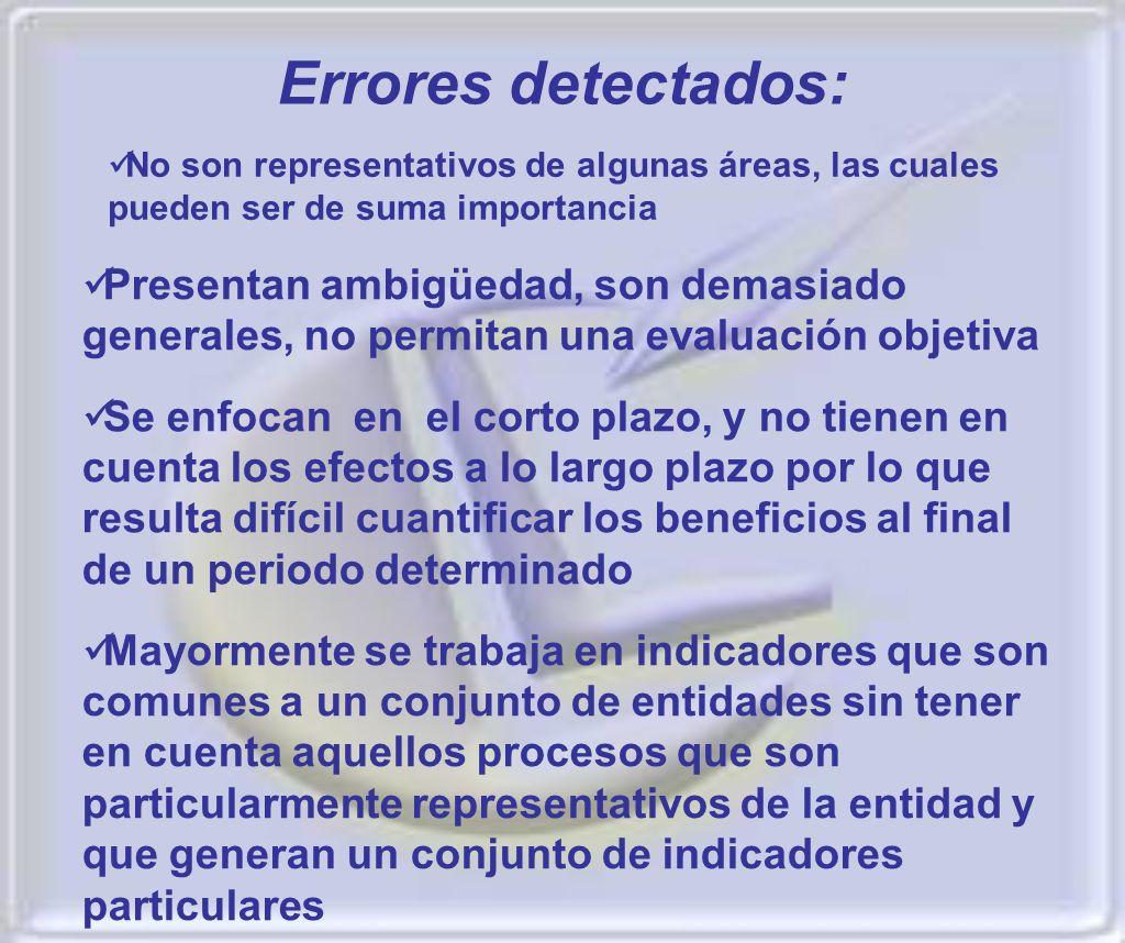 Errores detectados: No son representativos de algunas áreas, las cuales pueden ser de suma importancia.