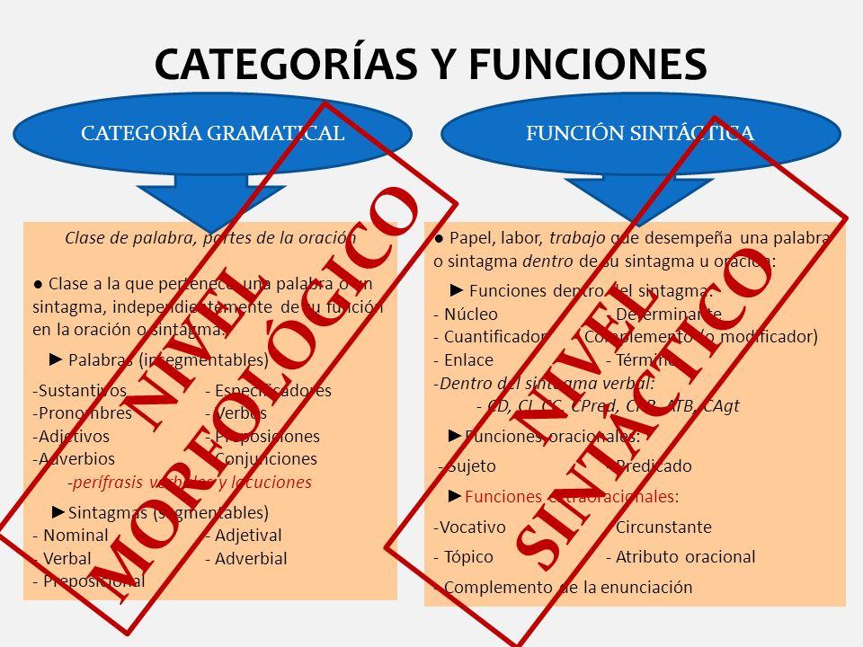 CATEGORÍAS Y FUNCIONES