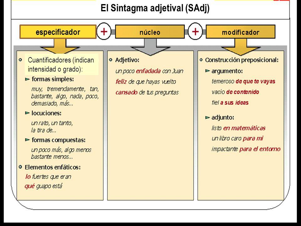 El Sintagma adjetival (SAdj)