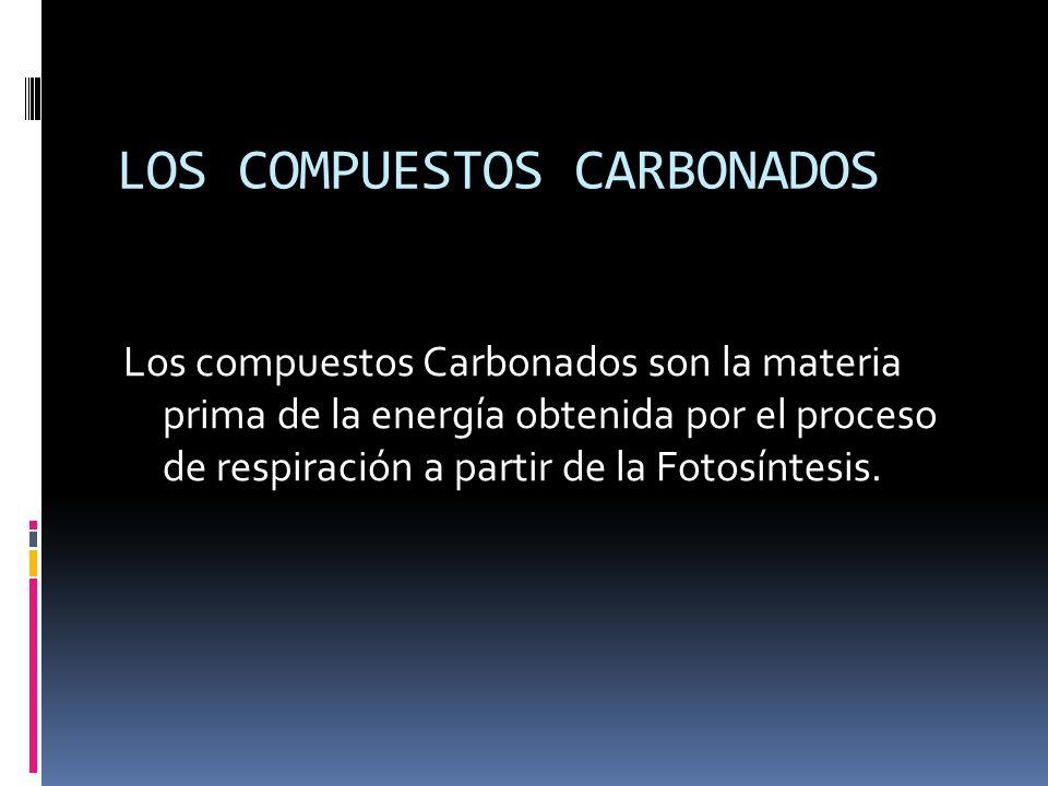 LOS COMPUESTOS CARBONADOS