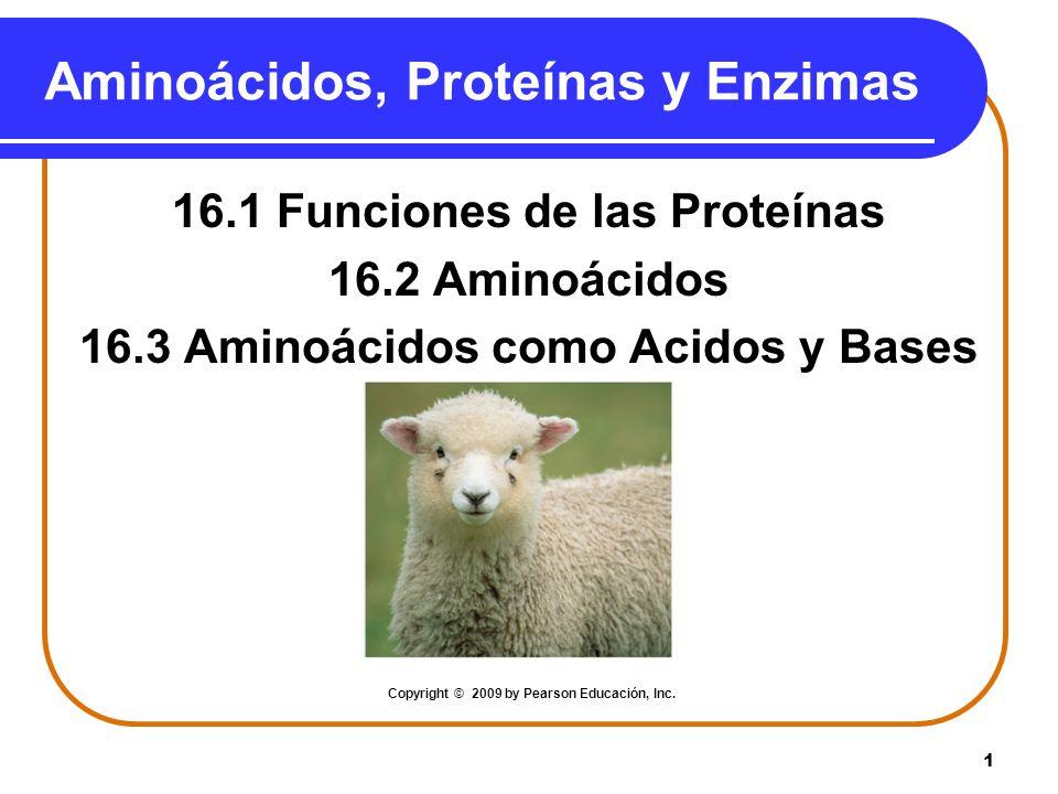 Aminoácidos, Proteínas y Enzimas