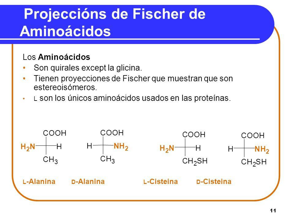Projeccións de Fischer de Aminoácidos