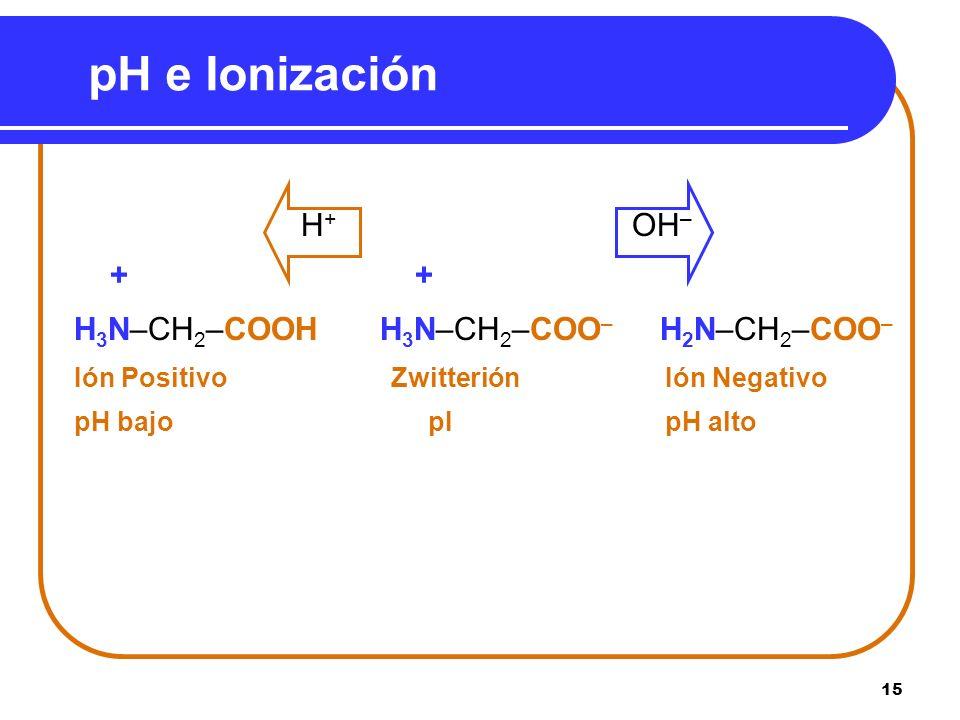 pH e Ionización H+ OH– + + H3N–CH2–COOH H3N–CH2–COO– H2N–CH2–COO–
