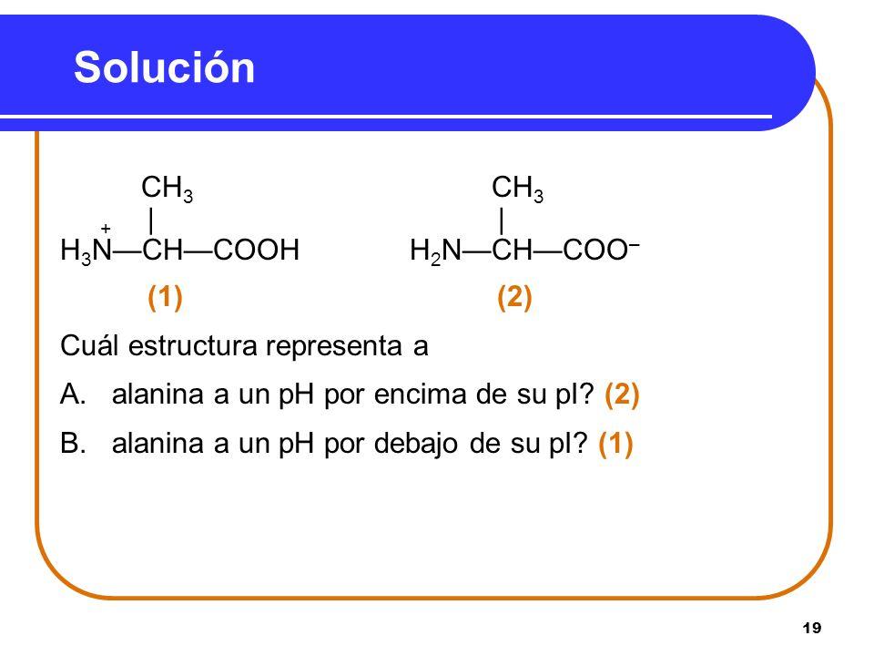 Solución + | | H3N—CH—COOH H2N—CH—COO– (1) (2)