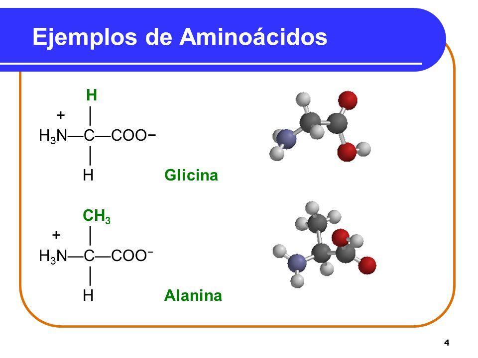 Ejemplos de Aminoácidos