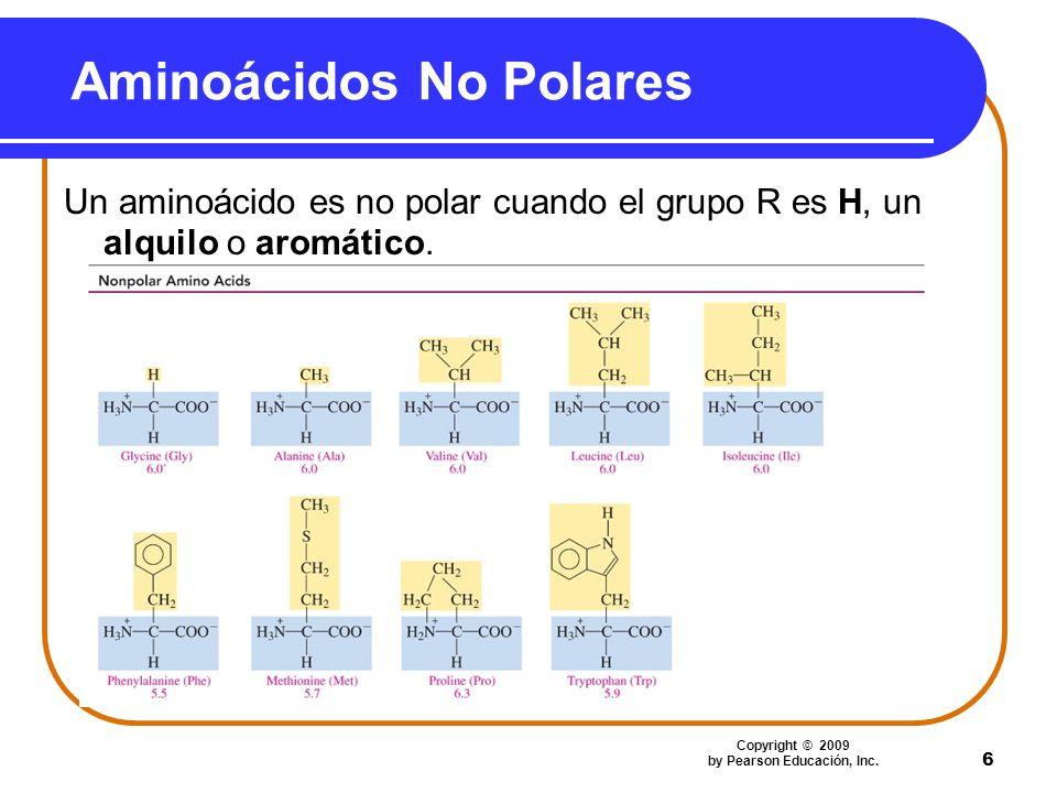 Aminoácidos No Polares