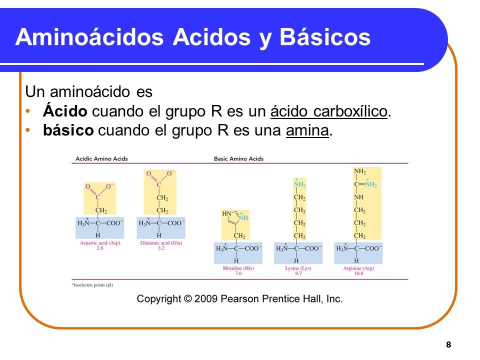 Aminoácidos Acidos y Básicos