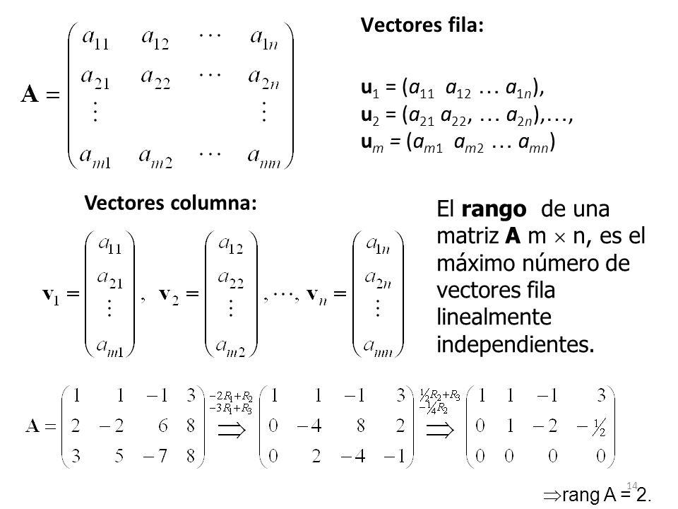 Vectores fila: u1 = (a11 a12 … a1n), u2 = (a21 a22, … a2n),…, um = (am1 am2 … amn) Vectores columna:
