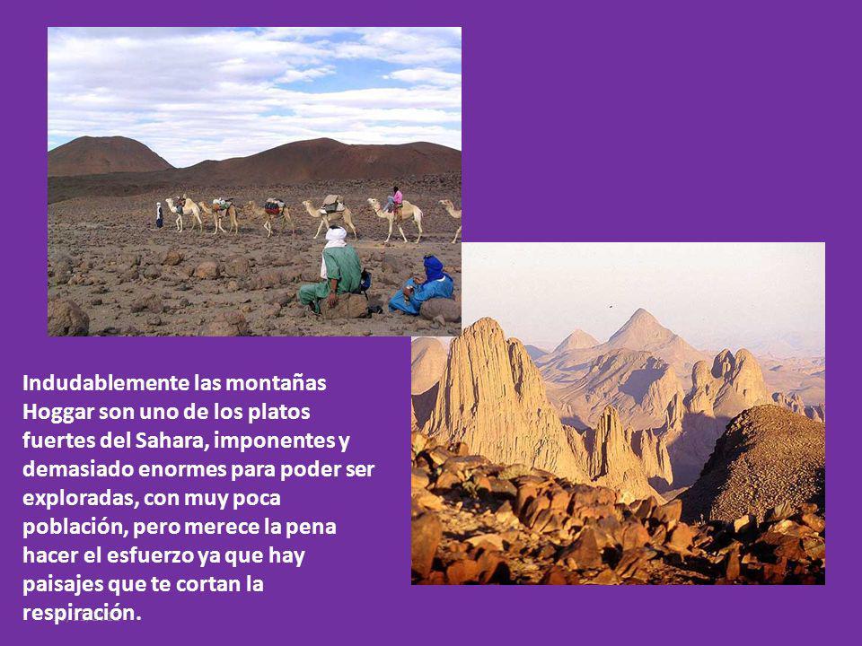 Indudablemente las montañas Hoggar son uno de los platos fuertes del Sahara, imponentes y demasiado enormes para poder ser exploradas, con muy poca población, pero merece la pena hacer el esfuerzo ya que hay paisajes que te cortan la respiración.