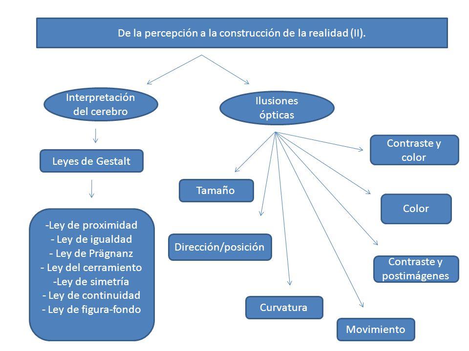 De la percepción a la construcción de la realidad (II).