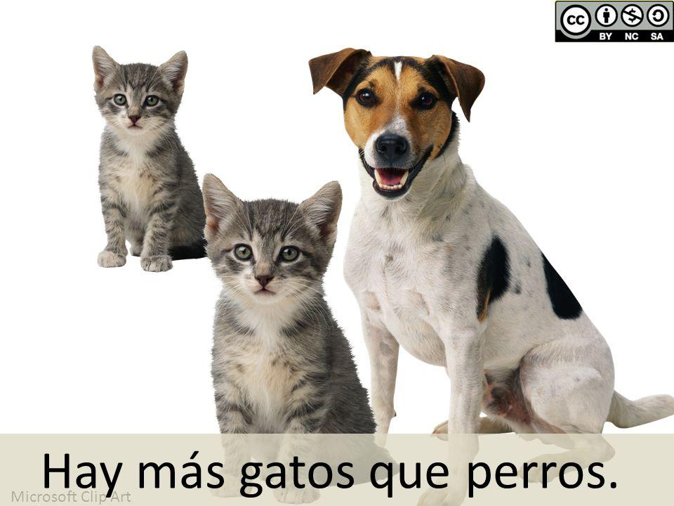 Hay más gatos que perros.
