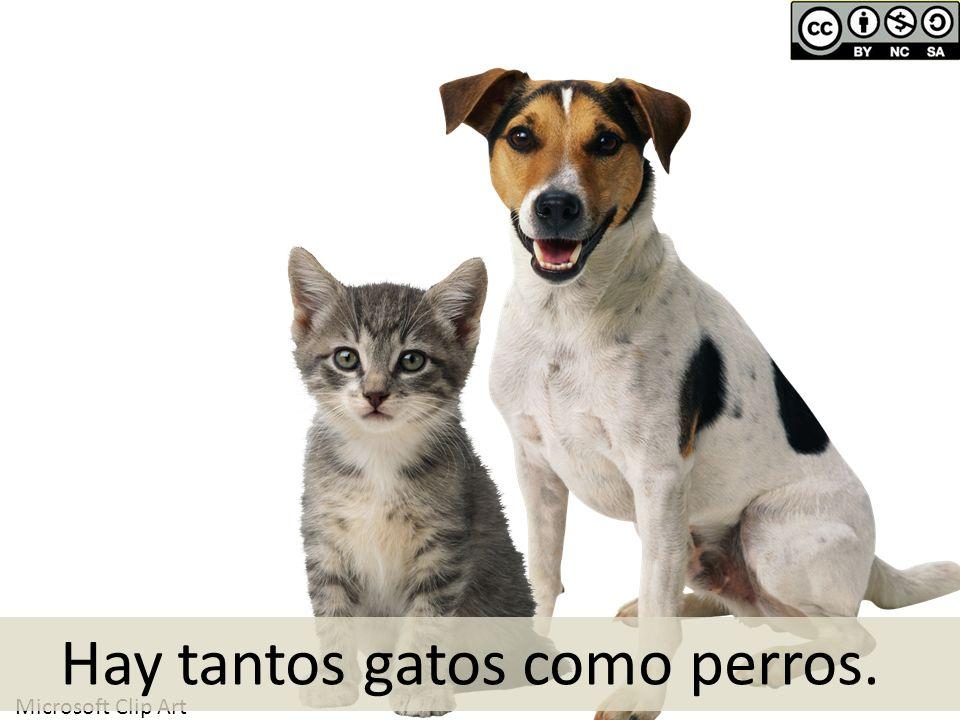 Hay tantos gatos como perros.