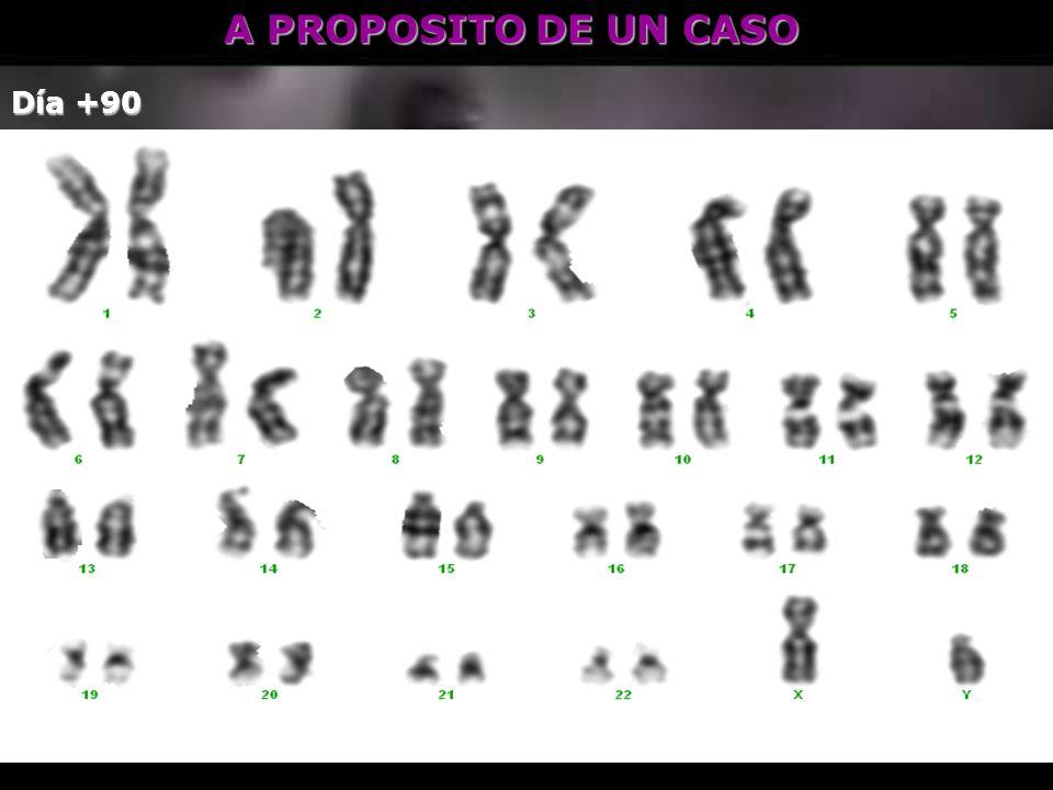 A PROPOSITO DE UN CASO Día +90