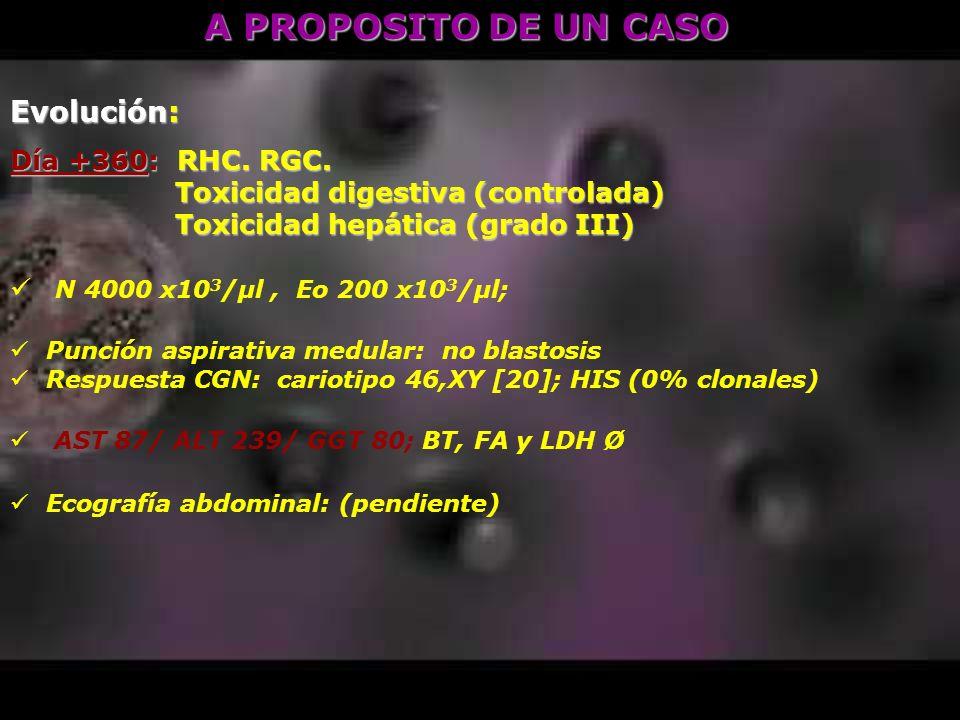 A PROPOSITO DE UN CASO Evolución: Día +360: RHC. RGC.