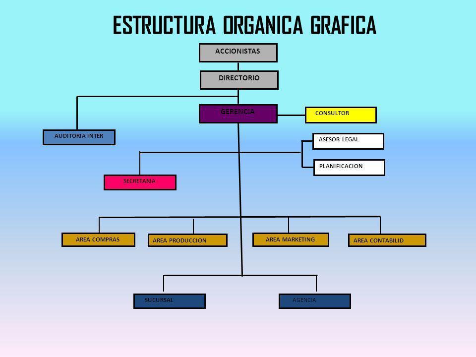 ESTRUCTURA ORGANICA GRAFICA