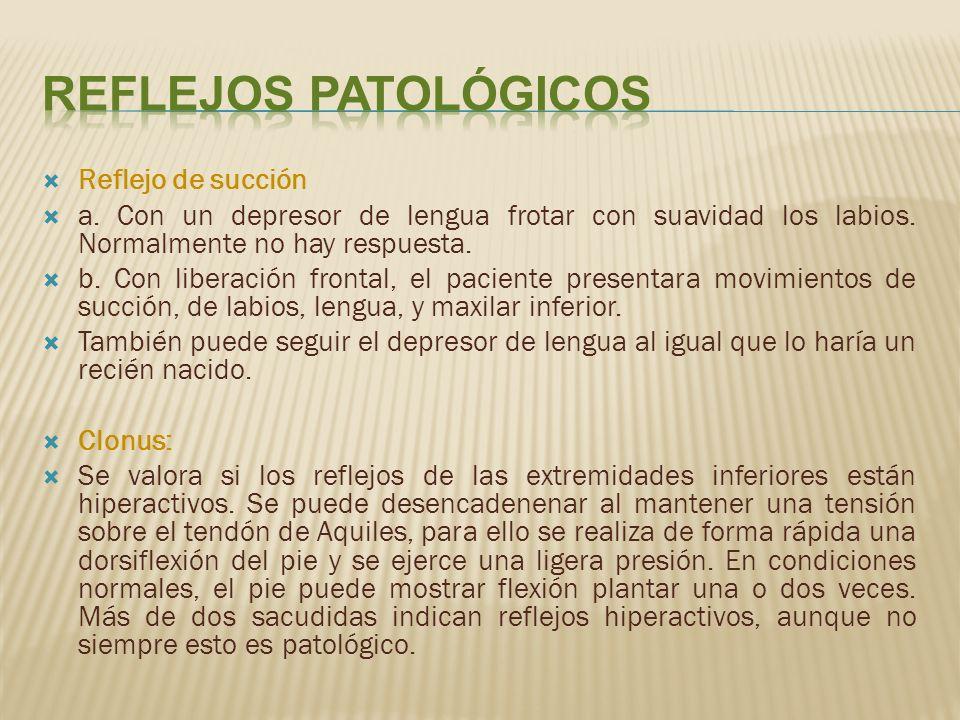Reflejos Patológicos Reflejo de succión