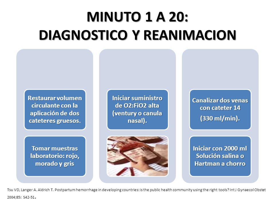 MINUTO 1 A 20: DIAGNOSTICO Y REANIMACION