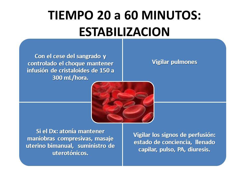 TIEMPO 20 a 60 MINUTOS: ESTABILIZACION