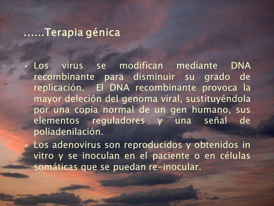 ......Terapia génica
