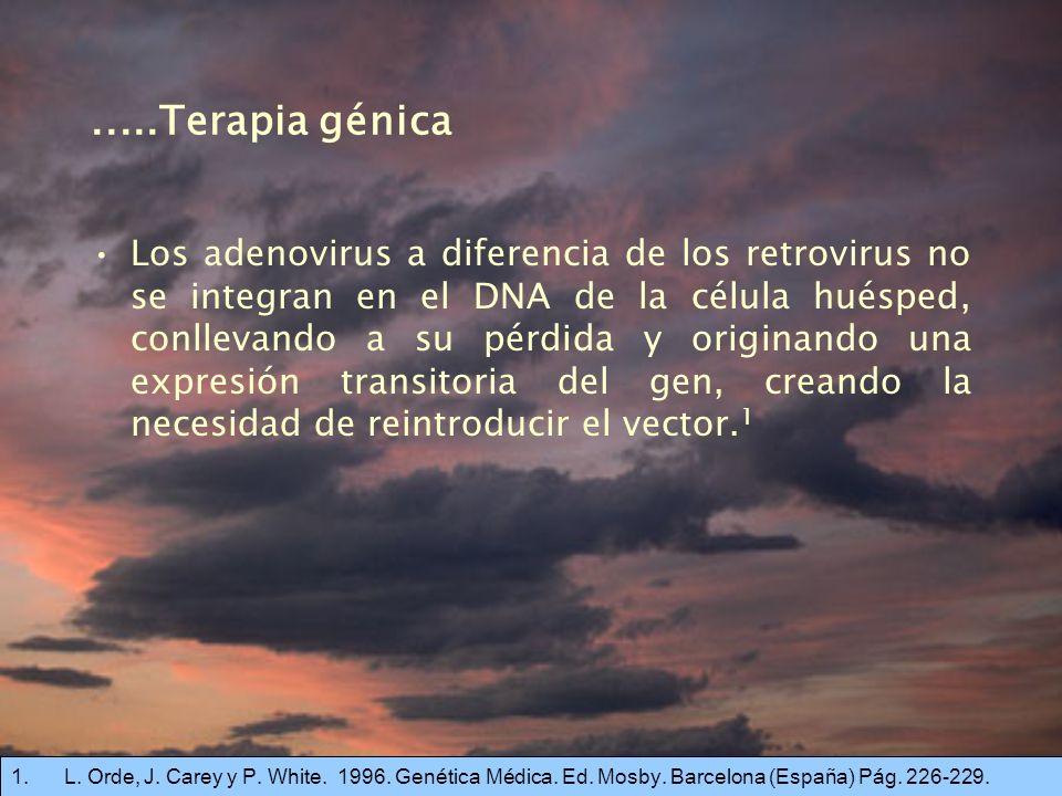 .....Terapia génica