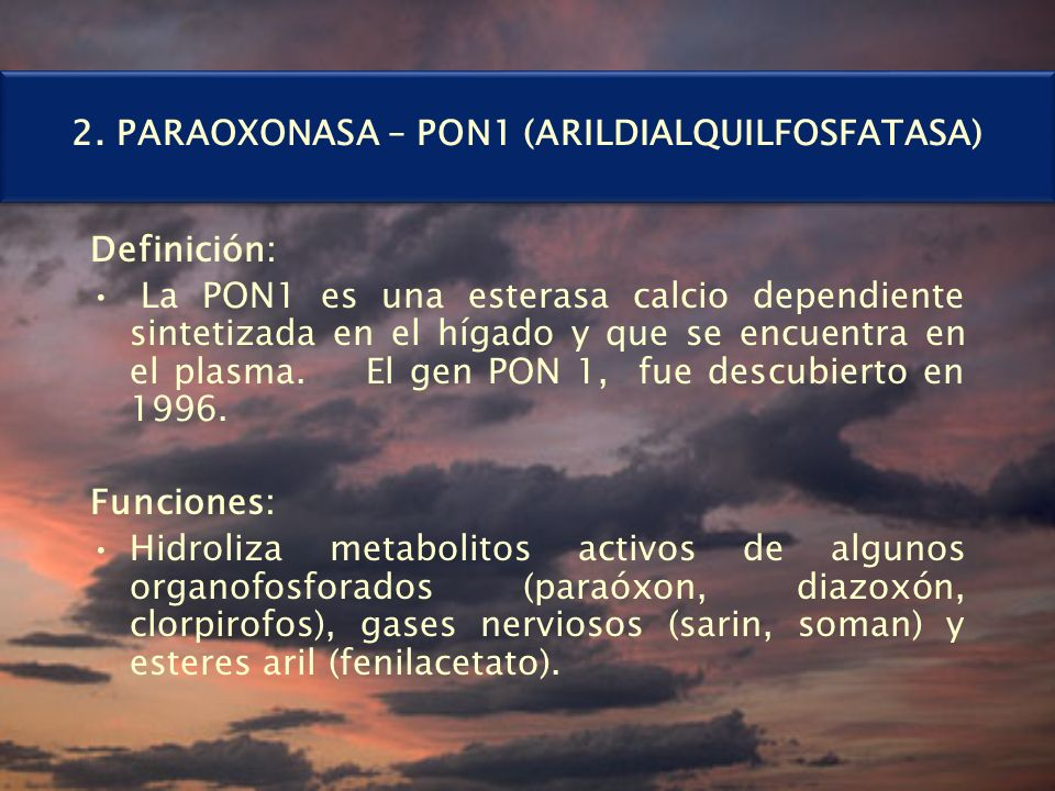 2. PARAOXONASA – PON1 (ARILDIALQUILFOSFATASA)
