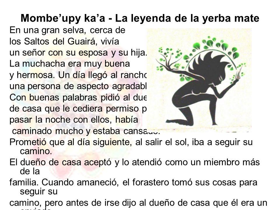 Mombe'upy ka'a - La leyenda de la yerba mate