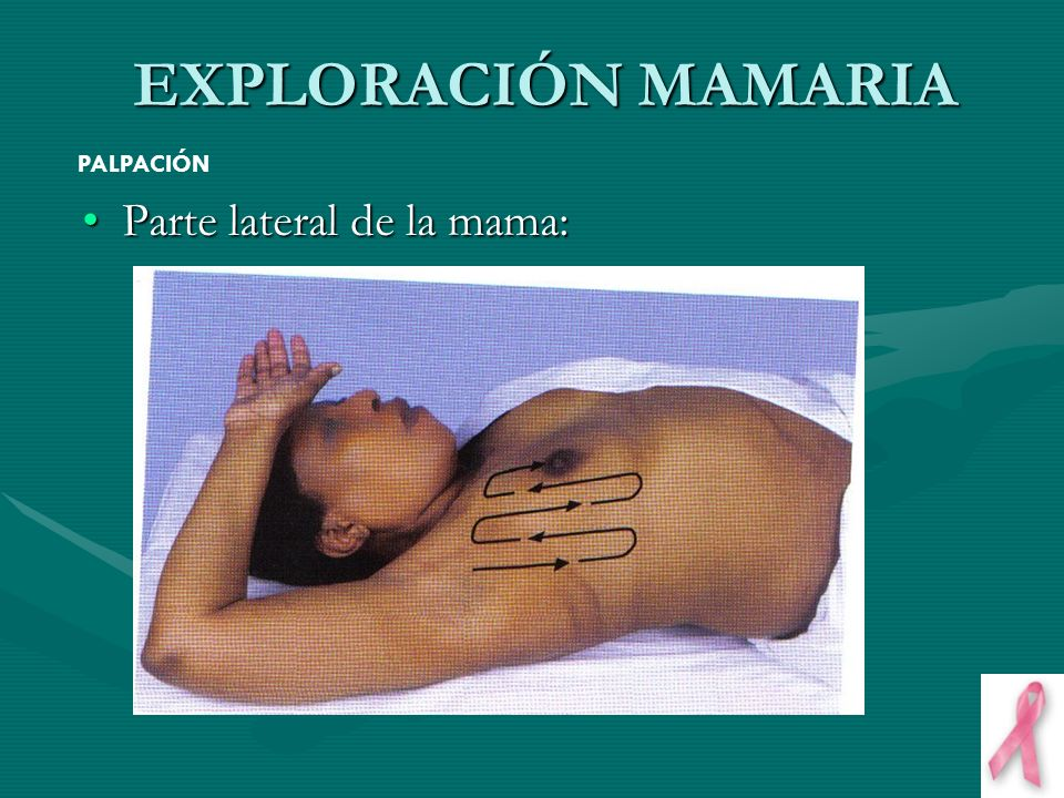EXPLORACIÓN MAMARIA PALPACIÓN Parte lateral de la mama: