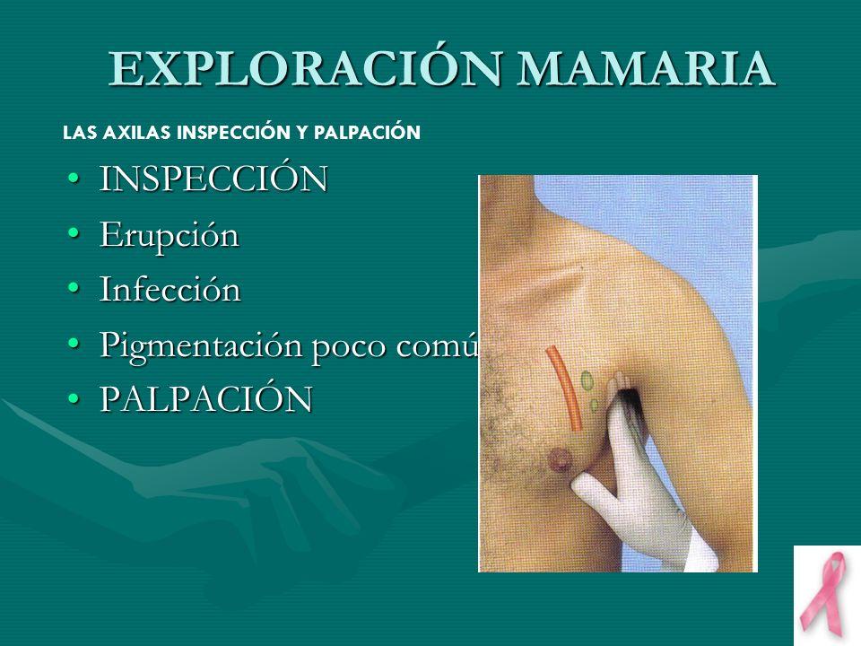 EXPLORACIÓN MAMARIA INSPECCIÓN Erupción Infección