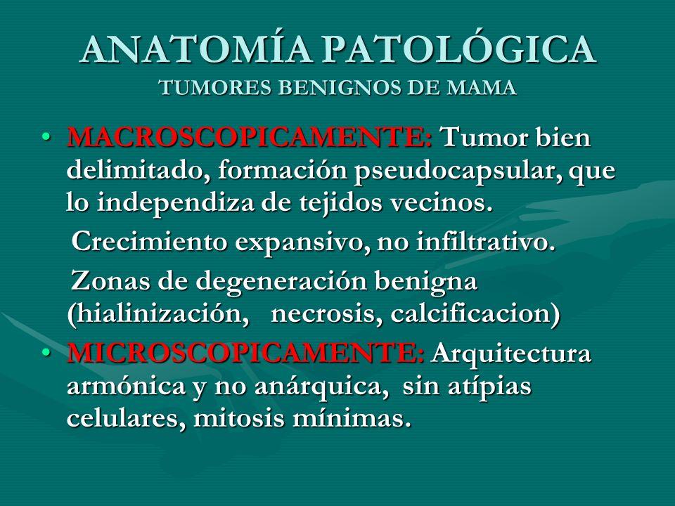 ANATOMÍA PATOLÓGICA TUMORES BENIGNOS DE MAMA
