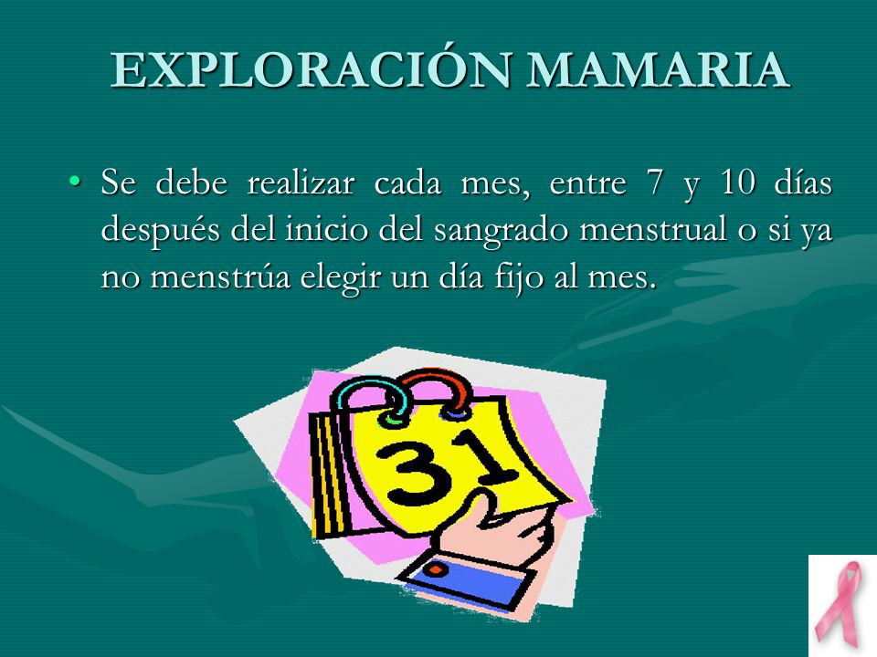 EXPLORACIÓN MAMARIA