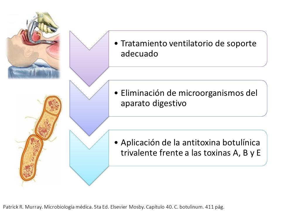 Tratamiento ventilatorio de soporte adecuado