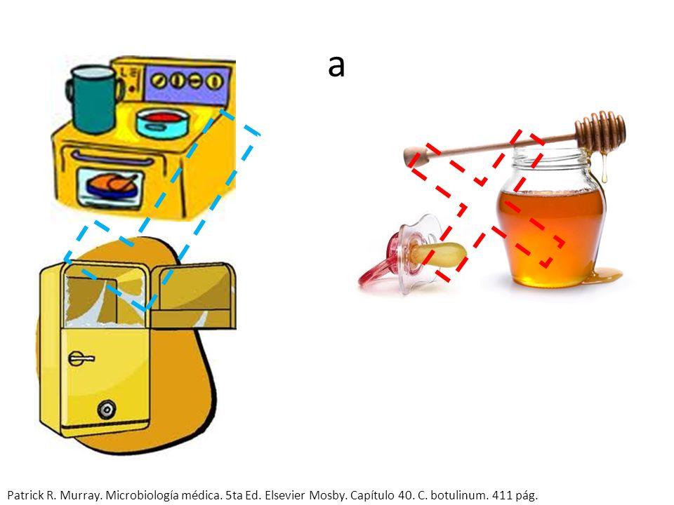a Patrick R. Murray. Microbiología médica. 5ta Ed.