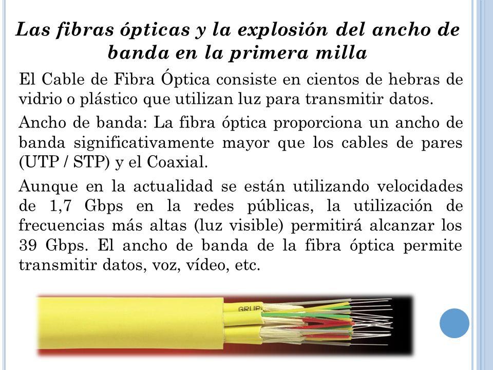 Las fibras ópticas y la explosión del ancho de banda en la primera milla