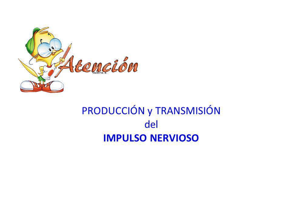 PRODUCCIÓN y TRANSMISIÓN