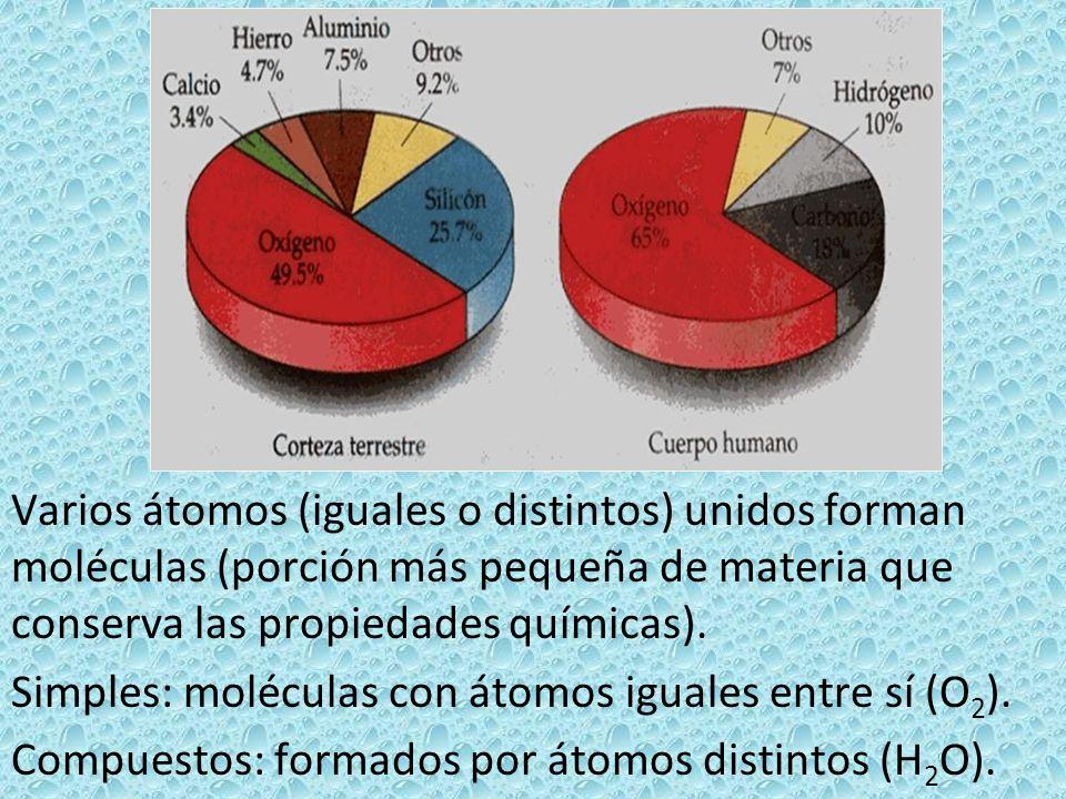 Varios átomos (iguales o distintos) unidos forman moléculas (porción más pequeña de materia que conserva las propiedades químicas).