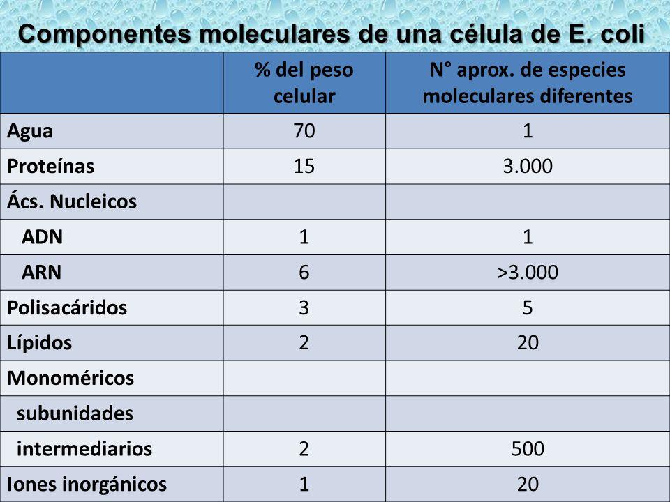 N° aprox. de especies moleculares diferentes