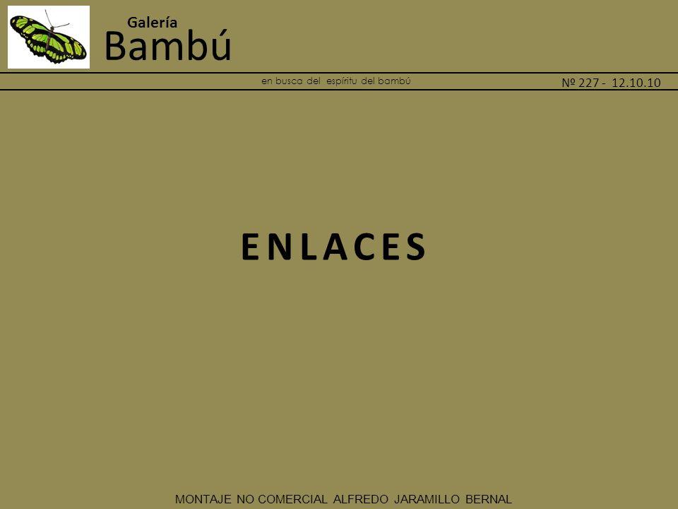 en busca del espíritu del bambú