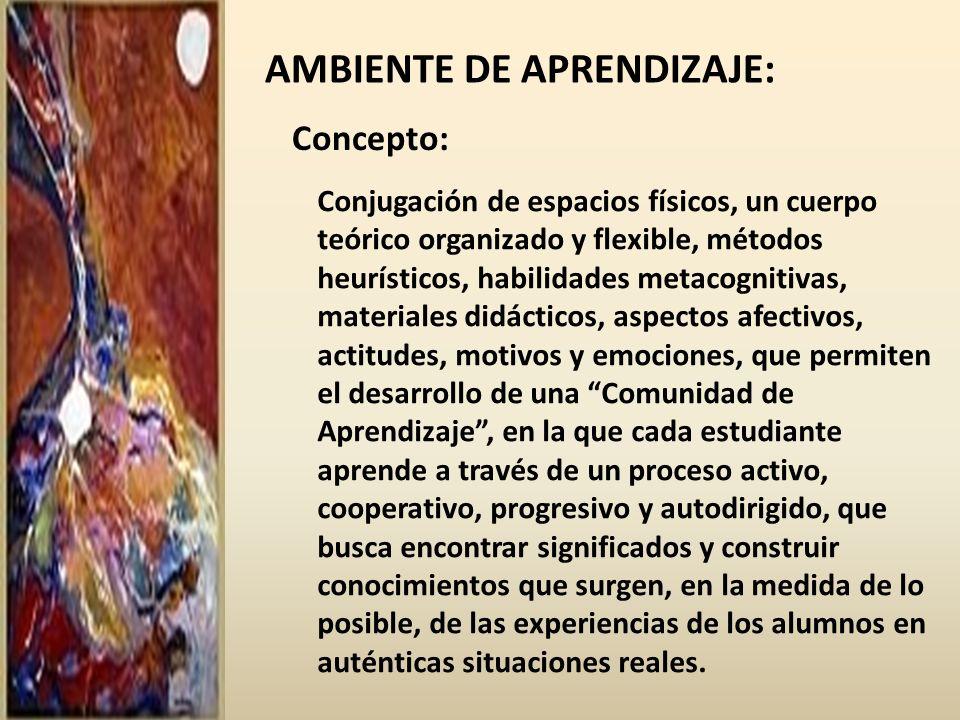 AMBIENTE DE APRENDIZAJE: