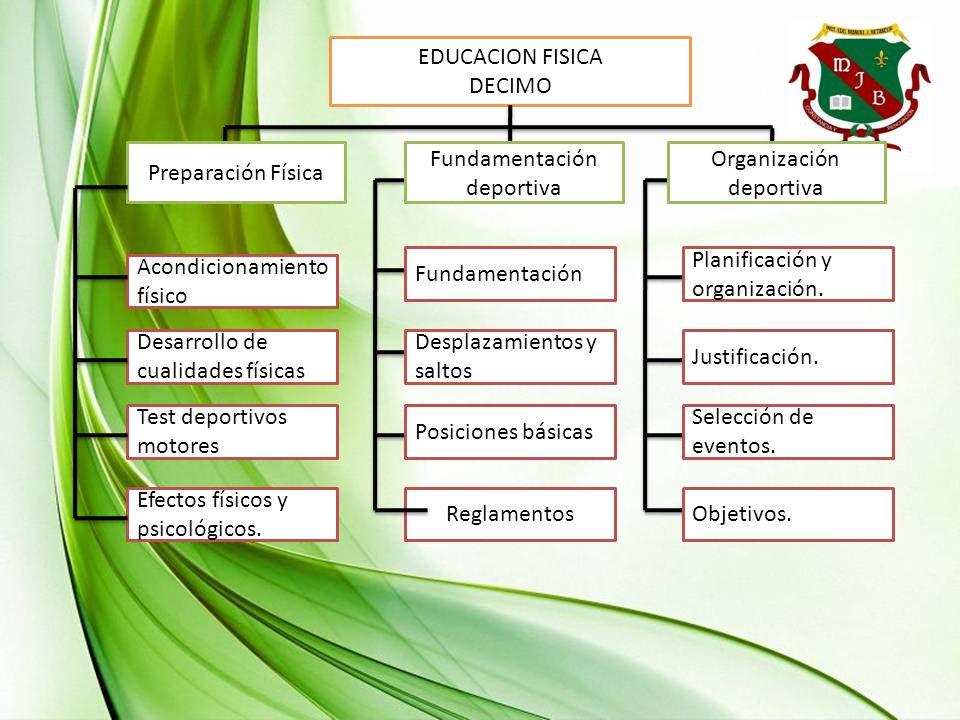 Fundamentación deportiva Organización deportiva