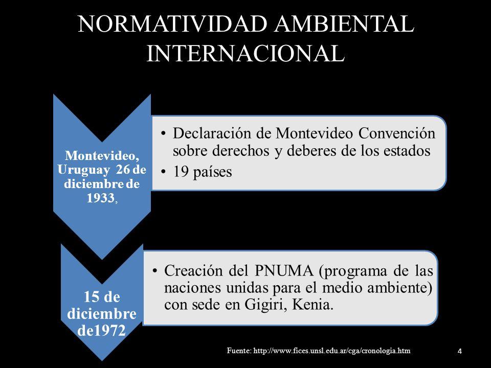 NORMATIVIDAD AMBIENTAL INTERNACIONAL