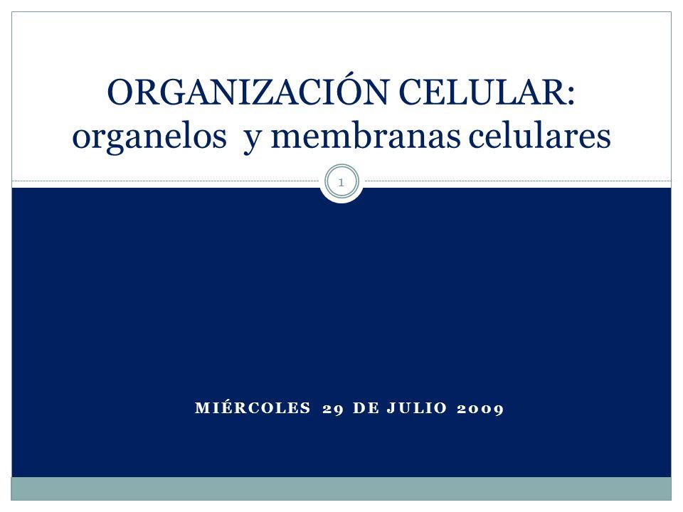 ORGANIZACIÓN CELULAR: organelos y membranas celulares