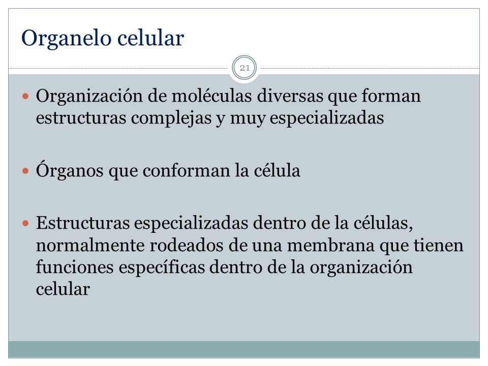 Organelo celularOrganización de moléculas diversas que forman estructuras complejas y muy especializadas.
