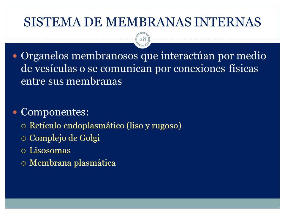 SISTEMA DE MEMBRANAS INTERNAS