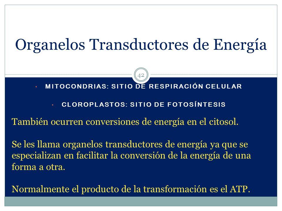 Organelos Transductores de Energía