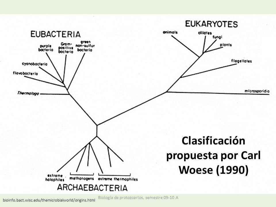 Clasificación propuesta por Carl Woese (1990)