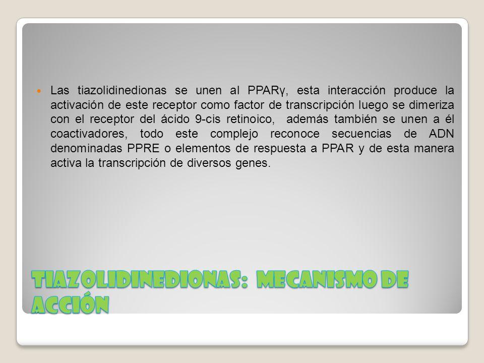 Tiazolidinedionas: Mecanismo de acción