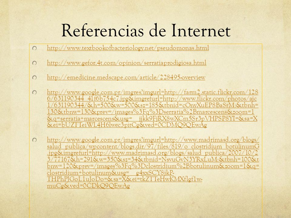 Referencias de Internet