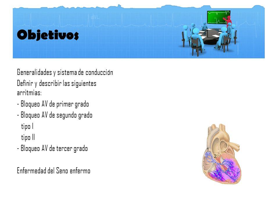 Objetivos Generalidades y sistema de conducción